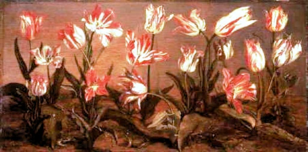 Cuyp-Jacob-Tulips