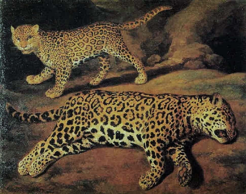 Cuyp-Jacob-Two-jaguars