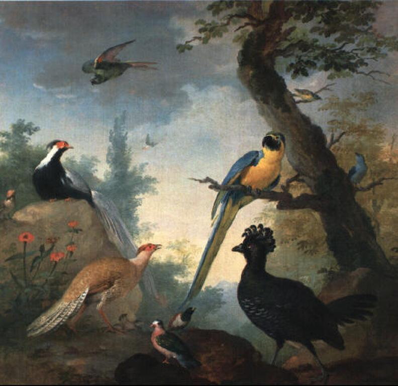 Schouman-Aert-Parrots-and-other-exotic-birds-in-a-landscape