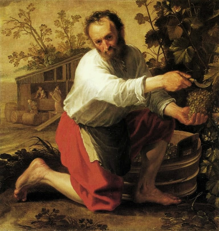 Cuyp-Jacob-Wine-Grower