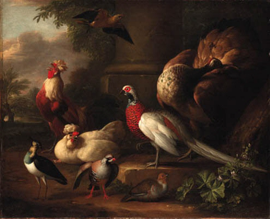Schouman-Aert-A-peacock-a-pheasant-a-cockerel-and-other-birds-in-a-landscape