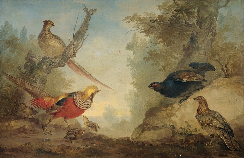 Schouman-Aert-Gold-Pheasants-with-chickens-and-black-grouse-chicks-in-a-landscape