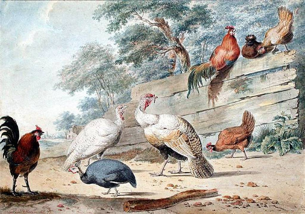 Schouman-Aert-Turkeys-Chicken-and-a-Guinea-Fowl-by-a-Wooden-Fence